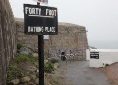 Fortyfoot 2